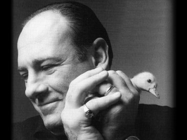 Tony Soprano - James Gandolfini
